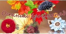 Осенний брошкопад